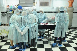 Новосибирский учебный центр похоронного сервиса
